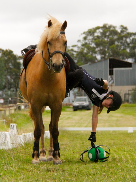 Youth Horse Riding in Berry | Berry Riding Club
