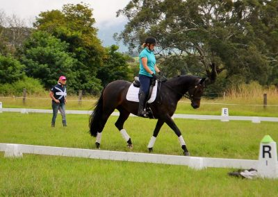 Dressage Clinic with Carolyn James