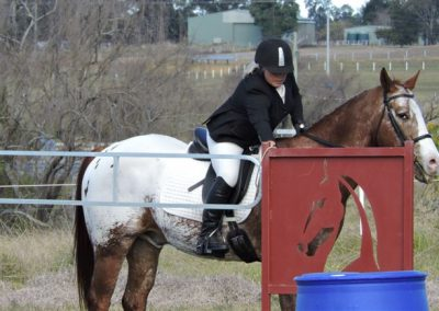 Working Equitation - gate