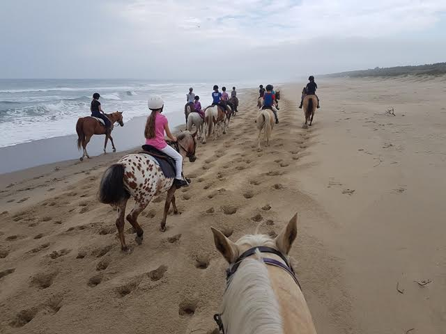 Youth Training Day – a Beach Ride