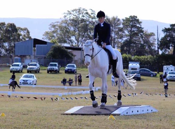 Working Equitation Comp – 9th September plus more