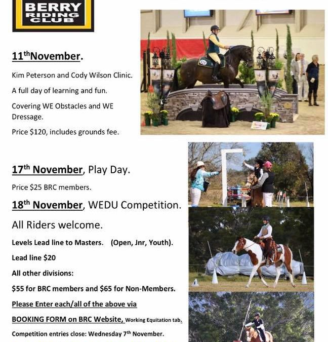 3 Working Equitation Events in November
