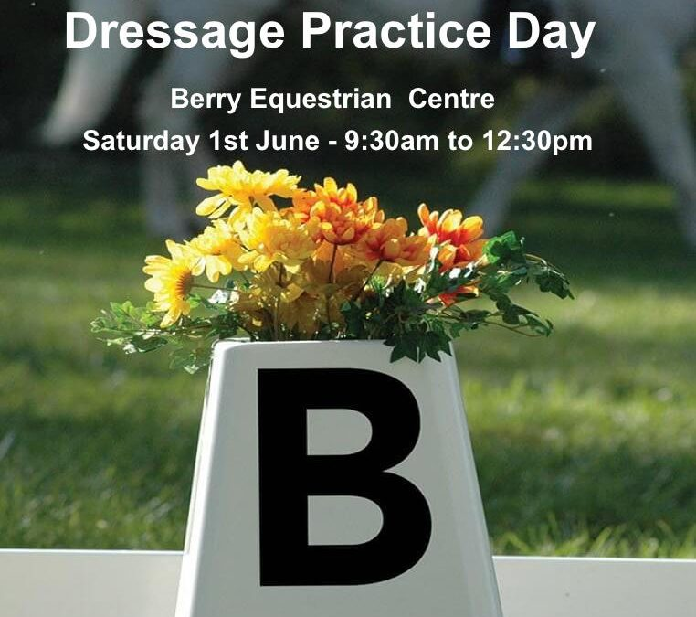 Dressage Practice Day – June 1