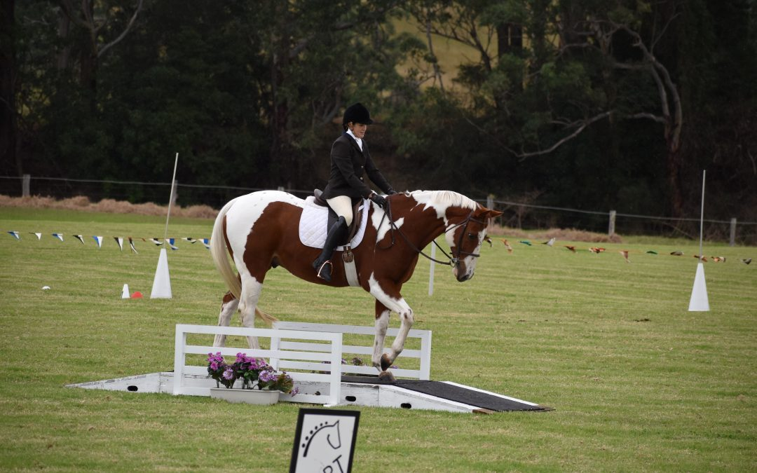 A Weekend of Working Equitation – 28/29 September