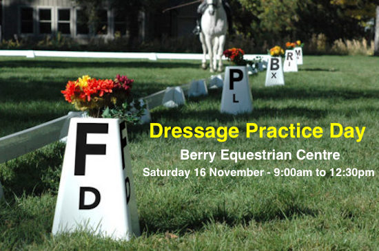 Dressage Practice Day – our Comp warm up opportunity