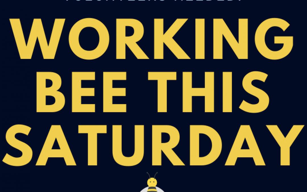 Working Bee – Sat 6 June