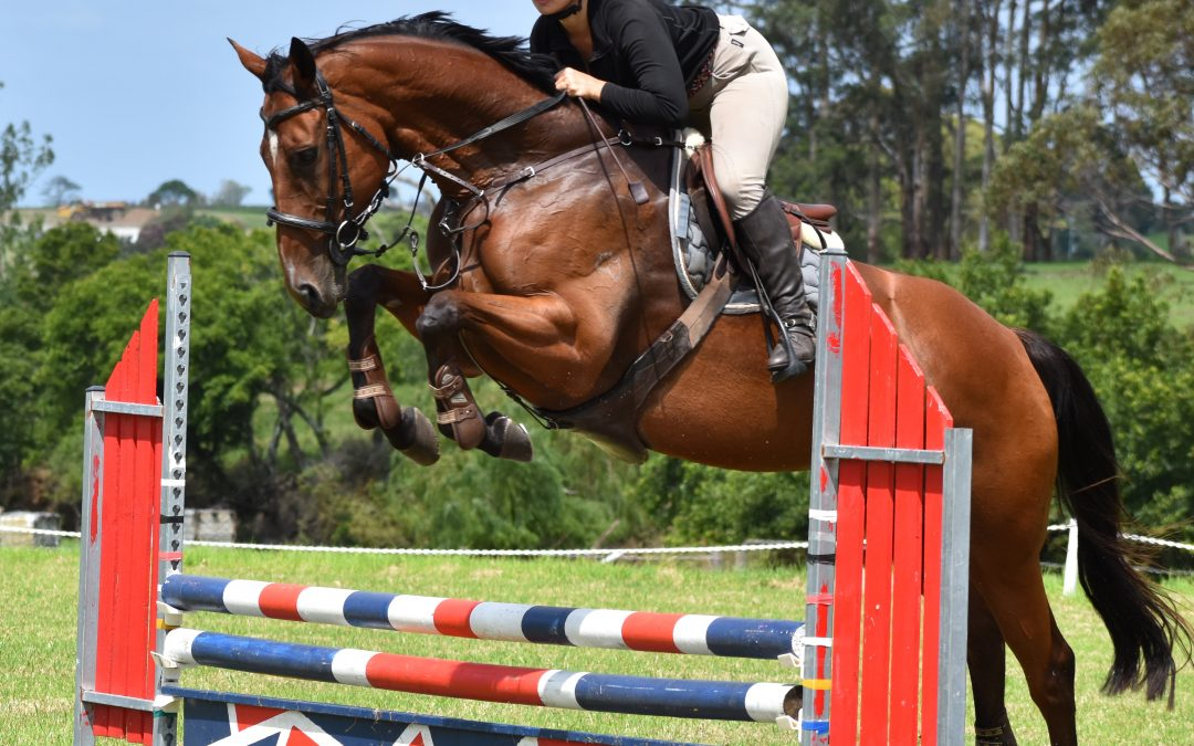 Clear Round Jumping Day – Sat 21 Nov